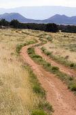 New Mexico, USA road mountain scene winding road — Stock Photo