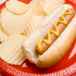 Grilled Hot Dog with Chips on Picnic Table Pattern — Stock Photo