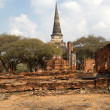 Ayutthaya, Thailand — Stock Photo