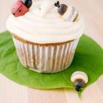 Ladybug - Bee Cupcake on leaf — Stock Photo #11002166