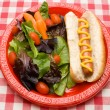 Grilled Hot Dog with Salad on Picnic Table Pattern — Stock Photo