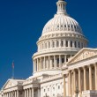 Capital Building, Washington DC - Stock Photo