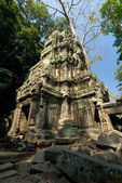 Temple Ruins, Angkor — Stock Photo