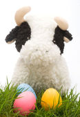 Easter Cow — Stockfoto