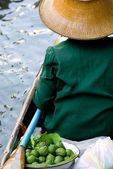 Damnoen Saduak Floating Market Vendor, Bangkok, Thailand — Stock Photo
