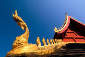 Laos Naga Detail - Vientiane, Laos — Stock Photo
