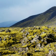 Mossy lava landscape - Iceland — Stock Photo