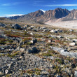 Northeast Greenland National Park Landscape — Stock Photo