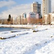 Snowy English Bay - Vancouver, Canada — Stock Photo