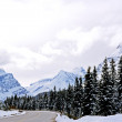 Icefield Parkway, Alberta. — Stock Photo