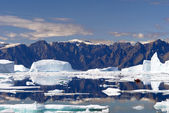 Icebergs - Northeast Greenland — Stock Photo