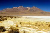 Grassy Andean Landscape — Stock Photo