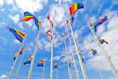 Gurur bayrakları — Stok fotoğraf
