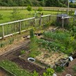View of garden from above — Stock Photo
