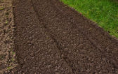 Preparing field for the planting season — Stock Photo