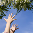 Hands of little girl and flowers - spring — Stock Photo #10740711