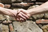 Hands of friends — Stock Photo