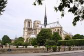 Paris - notre dame katedrali — Stok fotoğraf