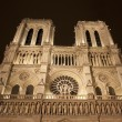 Paris - Notre Dame at night — Stock Photo #11110206