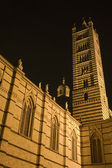 Siena - tower of cathedral at night — Stock Photo