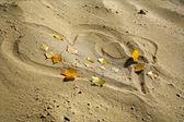 Сердце в песок в осень — Стоковое фото