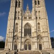 Brussels - Saint Michael and Saint Gudula gothic cathedral - west facade in evening light. - Stock Photo