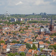 Brussels - outlook from National Basilica of the Sacred Heart to Atomium and expo park. — Stock Photo