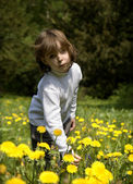 Little gril on the meadow and dandelions — Stock Photo