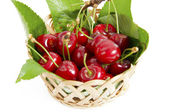 Red cherries with leaves — Stock Photo