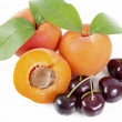 Apricots cherries — Stock Photo