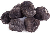 Freshly harvested black truffle — Stock Photo