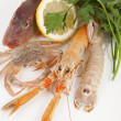 Mix of fresh fish — Stock Photo