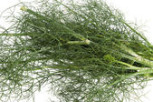 Wild fennel to flavor — Stock Photo