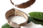 With fresh coconut fragrance — Foto de Stock