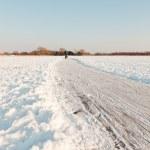 Dutch winter landscape with skater on frozen lake. Blue clear sky. — Stock Photo