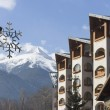 Bansko architecture - Stock Photo