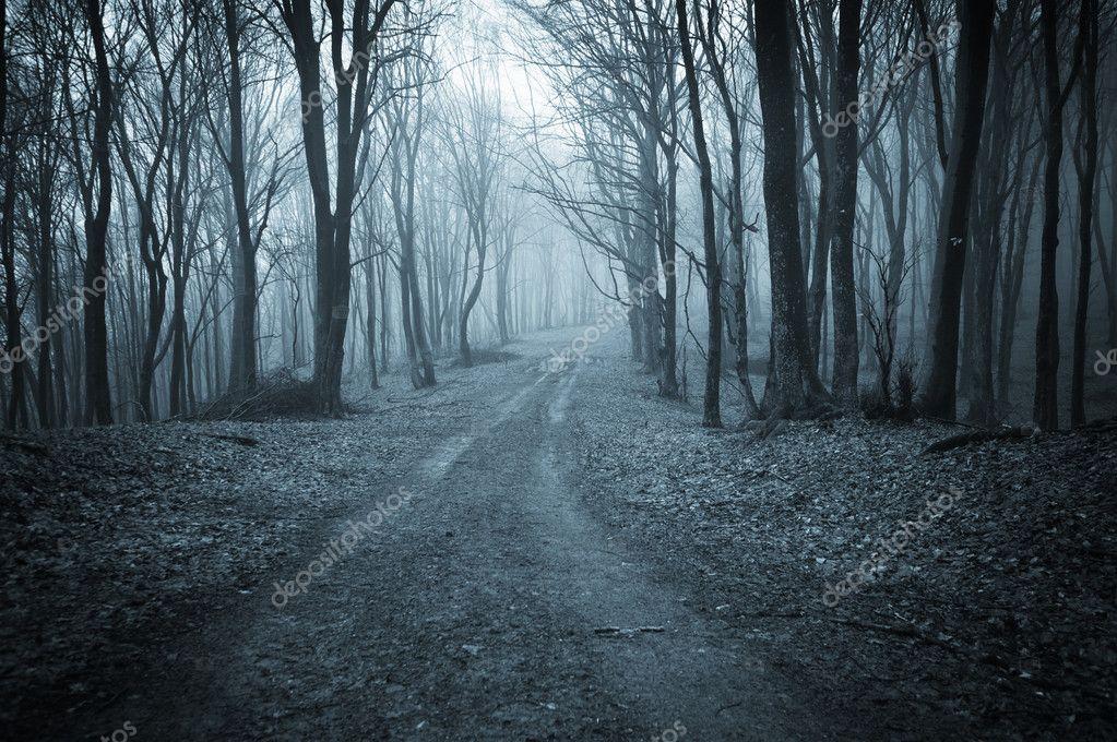 Фотообои Road trough a dark scary forest with fog
