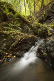 Waterfall on a green mountain river — Stock Photo