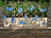 Blue Birds — Stock Photo