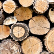 Woodpile firewood - Stock Photo