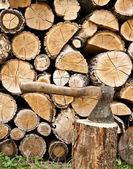 Woodpile and axe — Stock Photo