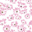 Foto de Stock  : Pattern rose daisywheels on white background raster
