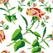 Pattern rose on white background — Stok Fotoğraf #11856907