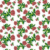 Pattern rose on white small — Stockfoto