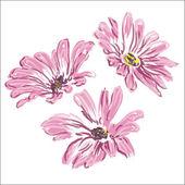 Three rose daisywheels raster — Stock Photo