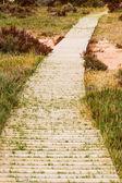 Path to nowhere — Stock Photo