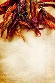 Quadro de pimentas secas — Foto Stock