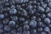 Lots of blueberries — Stock Photo