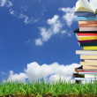 Stack of books in the garden — Stock Photo