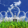 Light bulb with grass — Stock Photo